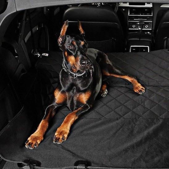 Housse de protection siège pour chien