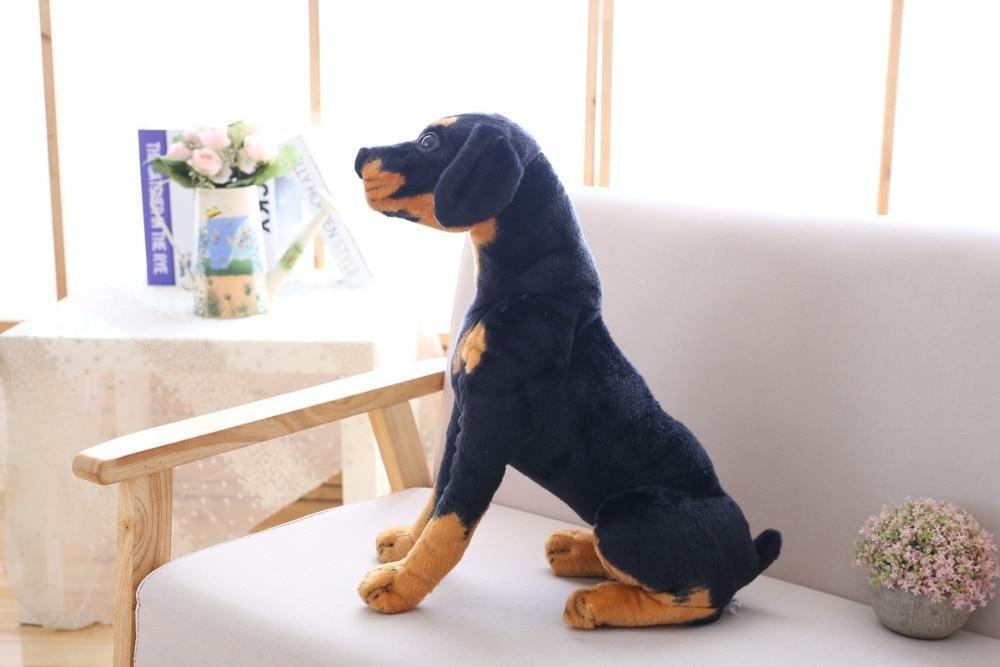 Peluche Chien Rottweiler