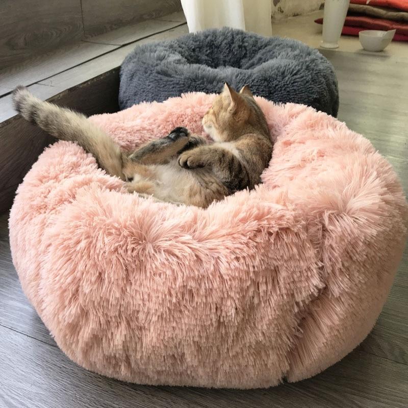 Sofa Pour Chien & Chat